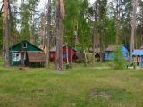 база в лесу