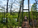 мост через тетерев